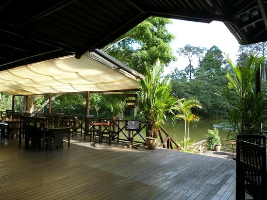 Sepilok Nature Resort: View from the main area