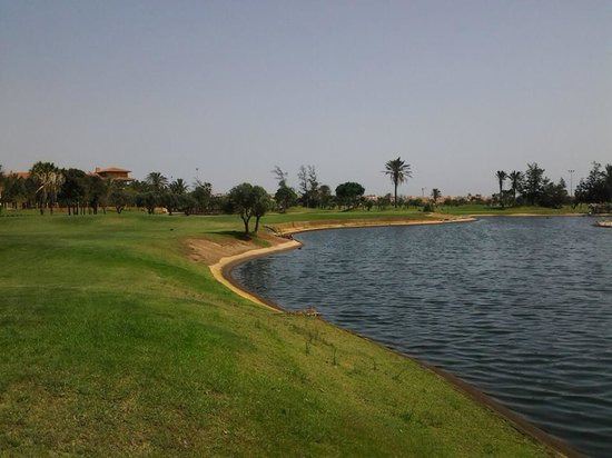 Hotel Elba Palace Golf : par 3 7th hole from the tee