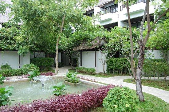 Mimosa Resort & Spa: территория отеля