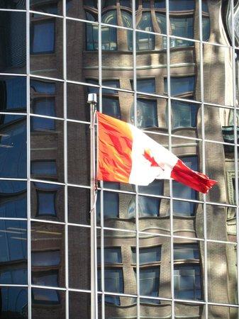 Tour Guys: Near Toronto's old city hall.