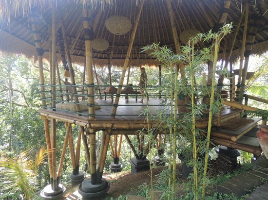 Sarinbuana Eco Lodge: Lust auf Yoga?