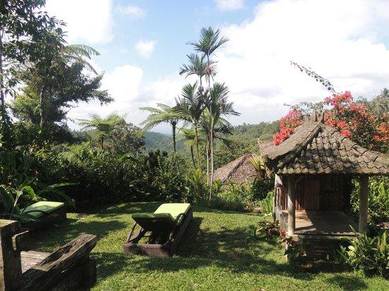 Sarinbuana Eco Lodge: Sonnenplatz