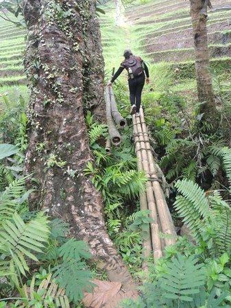 Sarinbuana Eco Lodge: On tour