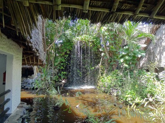 Southern Palms Beach Resort: Teichanlage
