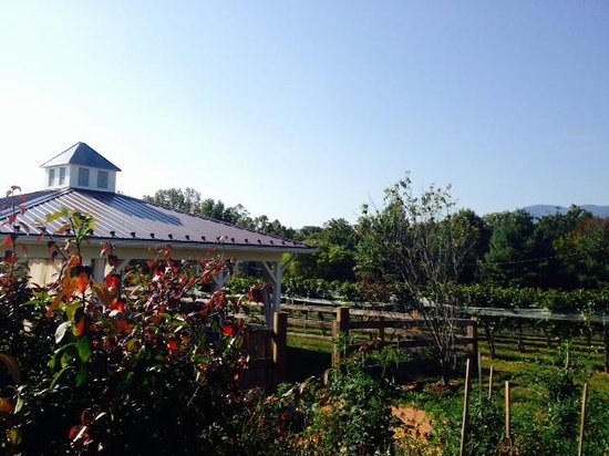 The Farmhouse at Veritas : Gazebo