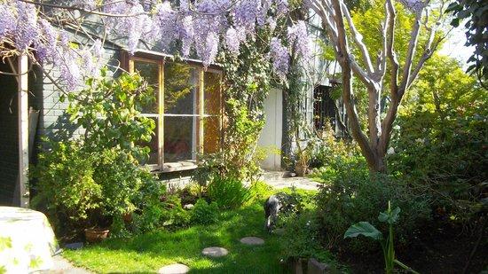 Magda House: Vista Glicine desde el jardin al Living