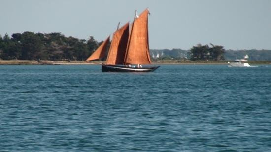 Seanergie : Croisière Golfe du Morbihan : golfe du morbihan