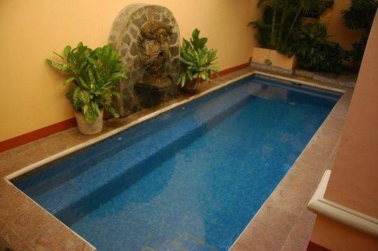 Casa San Francisco: Pool