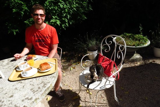 Avignon Hotel Monclar: Breakfast with hotel kitten