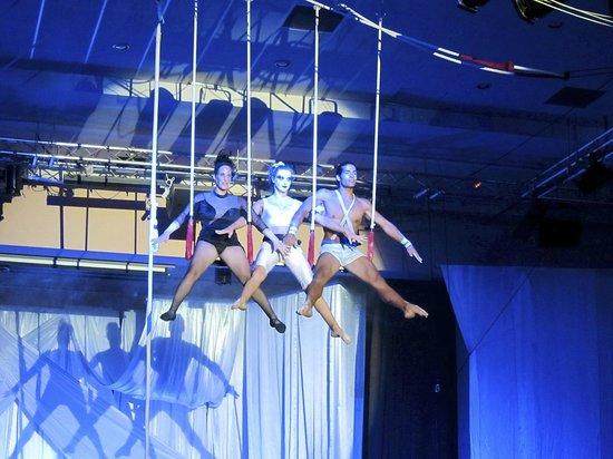 Club Med Marrakech La Palmeraie : De superbes spectacles le soir