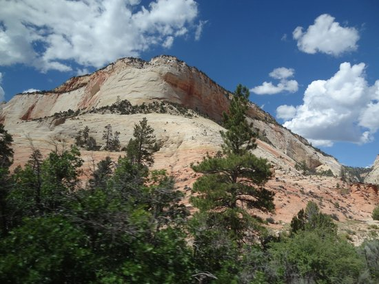 Zion Canyon Scenic Drive: les falaises