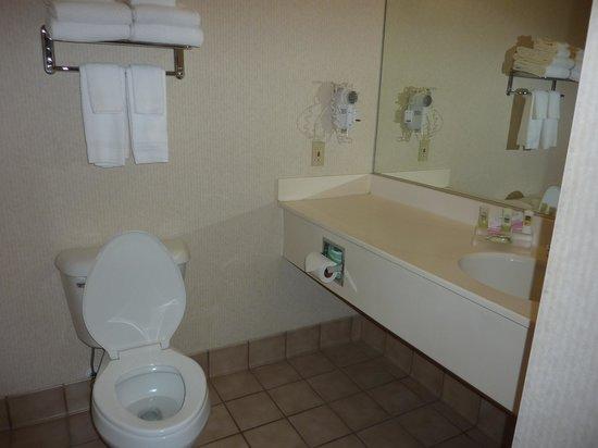 BEST WESTERN Plus Menomonie Inn & Suites: bathroom