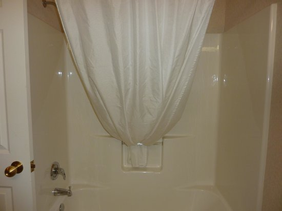 BEST WESTERN Plus Menomonie Inn & Suites: shower