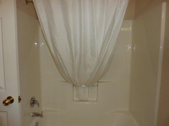 BEST WESTERN Plus Menomonie Inn & Suites: shower