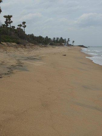 Serenity Beach: Plage