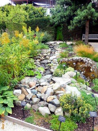 La prairie alpine plantes et fleurs des montagnes for Plantes et jardins avis