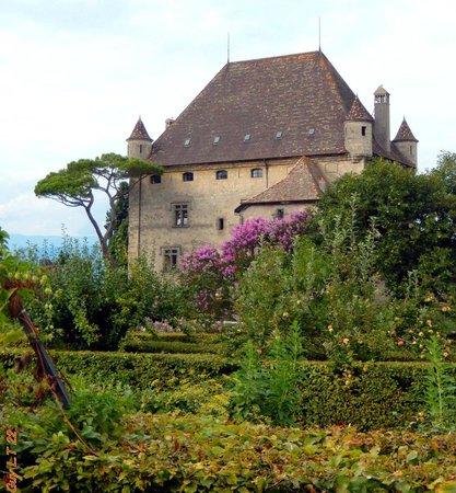 Le château d\'Yvoire vu du jardin des cinq sens... - Photo de ...