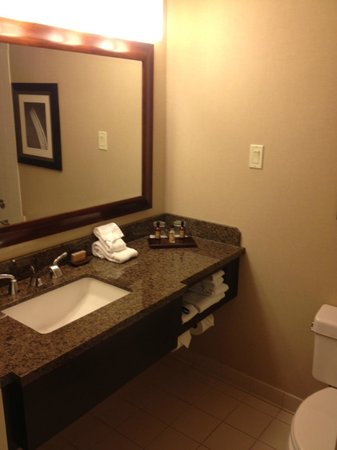 Newark Liberty International Airport Marriott: Bathroom