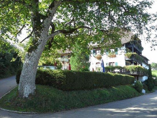 Schopfheim, Allemagne : Landgasthof Hirschen in Kleines Wiesental Sallneck