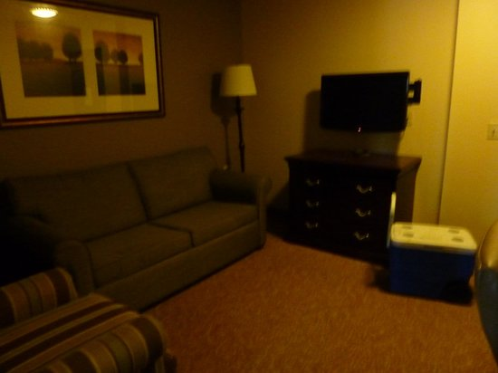 Country Inn & Suites by Radisson, Red Wing, MN: living room