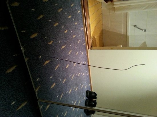 Hotel Osterport: Mirror with cracks and missing pieces!