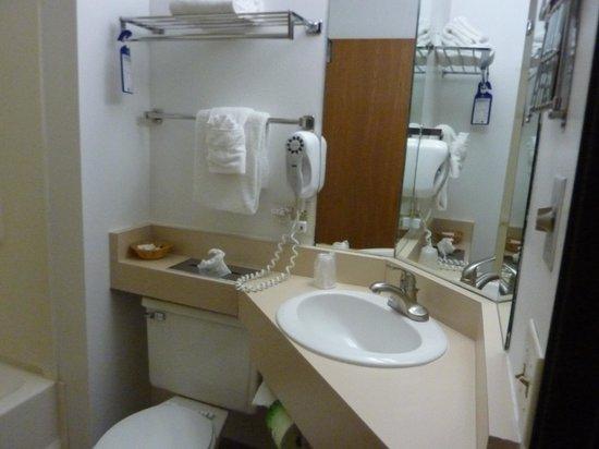 Bluffview Inn & Suites: bathroom in suite