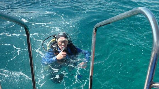 Dolphin Diving Centre: Mise à l'eau