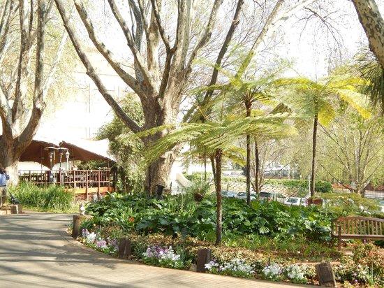 Sunnyside Park Hotel: Patio