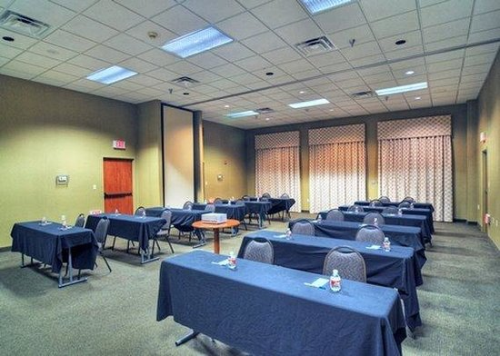 Comfort Inn DFW North / Irving: meeting room