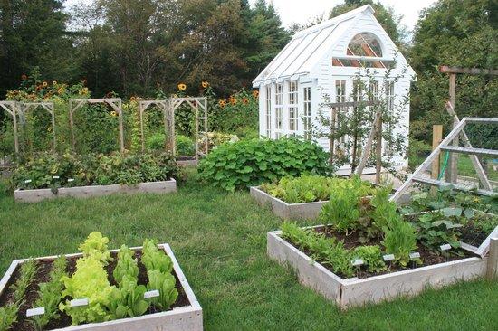 Horse and Hound Inn: Kitchen garden on the grounds.