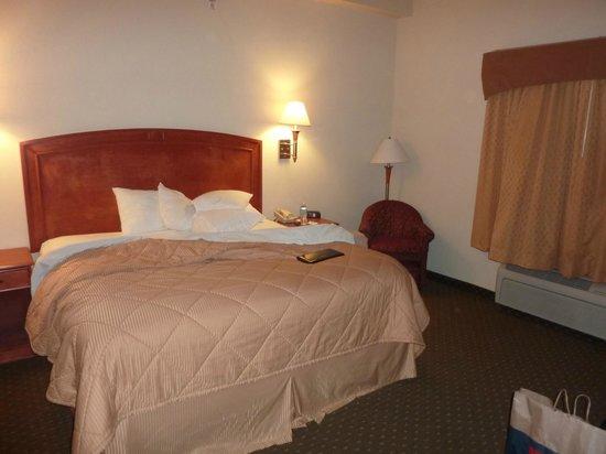 Comfort Inn & Suites: Chambre avec lit king bed