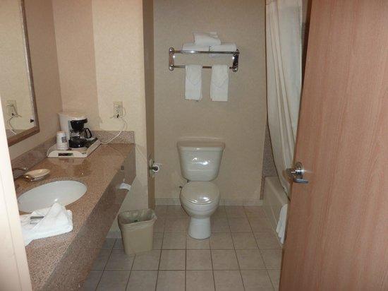 Comfort Inn & Suites: Salle de bain propre