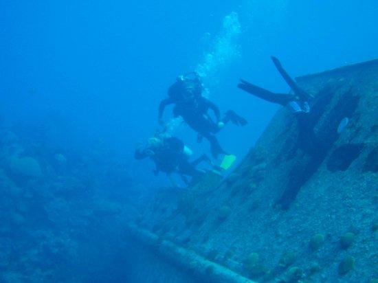 Blue Water Divers & Watersports Ltd : Hermes