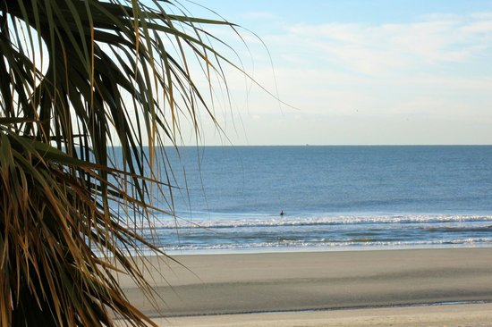 Tides Folly Beach: View from our room~Gorgeous!