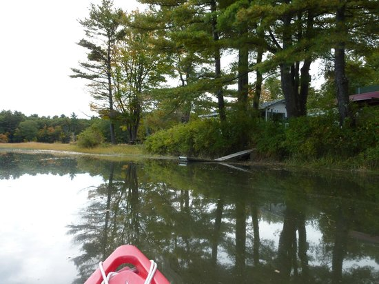 Wild Duck Campground & RV Park, Inc: approaching the dock at the campground