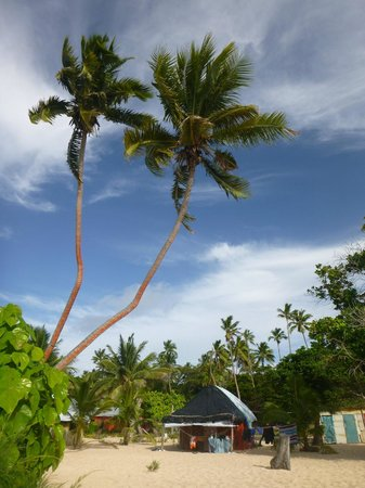 Taiana's Resort: Looking back at my fale from the beach