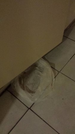 Venus Hotel: Some genius trying to stop the flooding in the hallways with a trashbag
