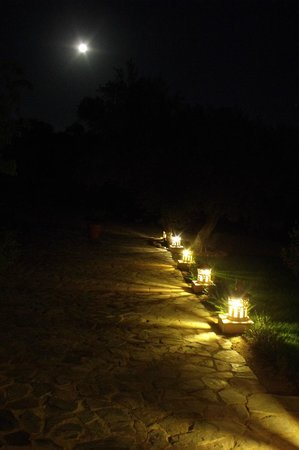 Cortijo La Canada del Sacristan: The night lit walk