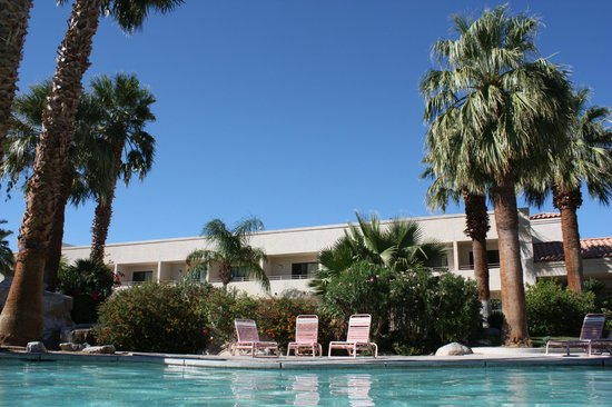 Miracle Springs Resort and Spa: Pool View 3