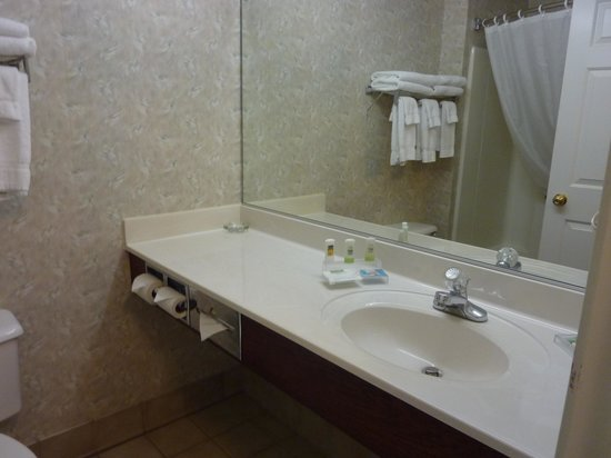 Country Inn & Suites by Radisson, Dubuque, IA: bathroom