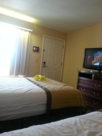 Baymont Inn & Suites Roanoke Rapids: i Put the flowers there