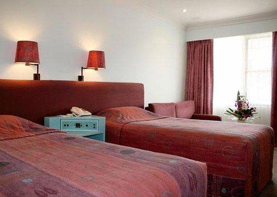 كومفورت إن ألباني: Guest room