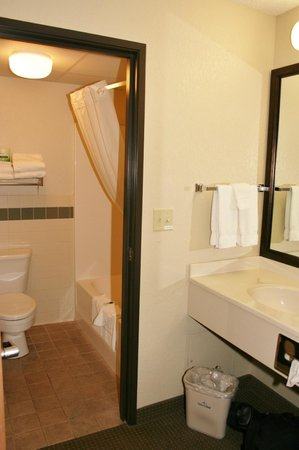 AmericInn Lodge & Suites Wabasha : Sink was outside the actual bathroom, nice feature.