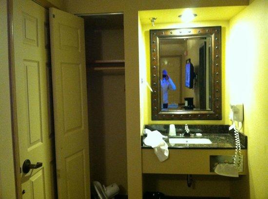Denali Princess Wilderness Lodge : The clogged sink