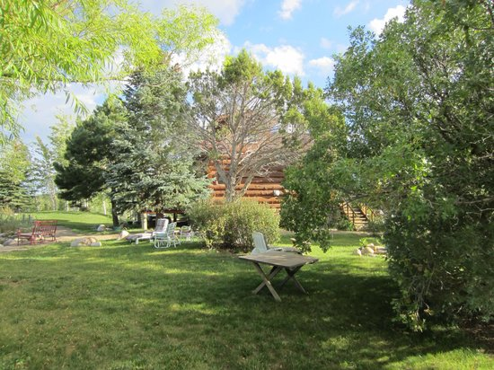 Sundance Bear Lodge : I could sit and read a book for days on the lovely grounds