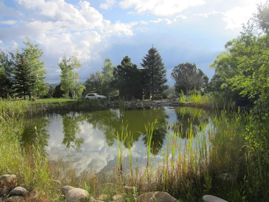 Sundance Bear Lodge : A pleasant pond for bird watching.
