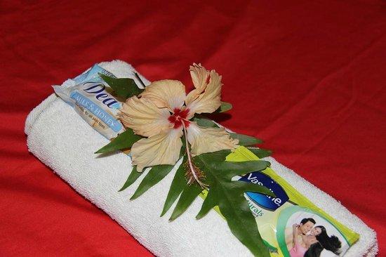 Traveller's Budget Motel: Flowers in Room