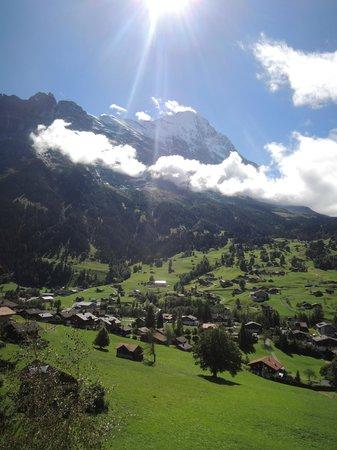 Jungfrau Lodge Swiss Mountain Hotel : View