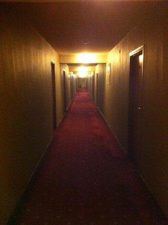Tsentralniy Hotel