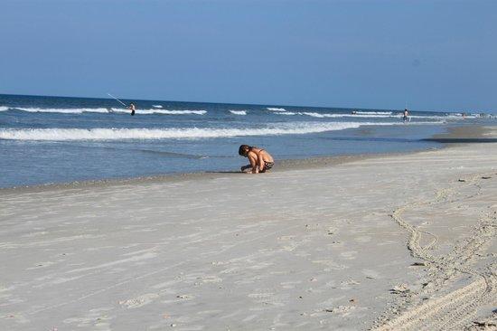 Ormond Beach: Playing